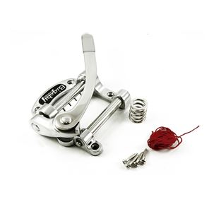 Picture of Bigsby® B50 licensed B5 chrome