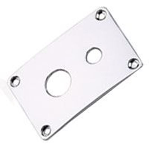 Picture of 2-hole input cover chrome