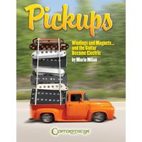 Picture of Pickups, Windings and Magnets